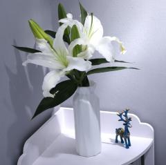 居家客厅花瓶圆瓶900-120/箱 灰色 900