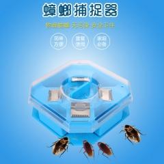 家用安全无毒蟑螂诱捕器 120/箱 蓝色 12.5*12.5*4.5cm